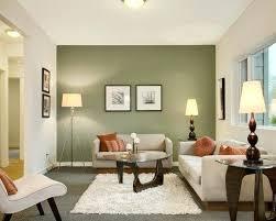 green living rooms ideas wonderful sage green living room ideas contemporary living room with and sage