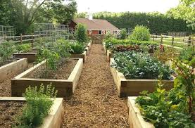 raised beds how to garden bed corners home depot gardening pt 1
