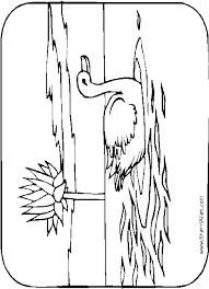 Watervogels Kleurplaten