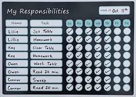 Magnetic Board Chore Chart