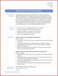 Mortgage Originator Resume Beautiful Resume Title Processor Word