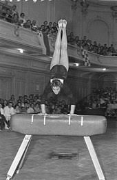 Vault gymnastics Boys The Apparatusedit Wikipedia Vault gymnastics Wikipedia