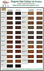 Radico Dark Brown Plant Hair Colour