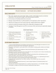 Best Software Engineer Resume Resume Software Skills Examples Emberskyme 11