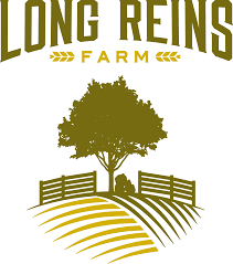 Jon Ferland Design & Illustration » Long Reins Farm Logo