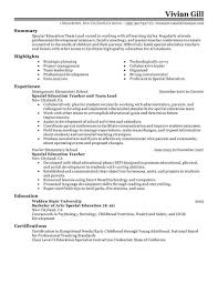 leadership summary resume example leadership examples for resume