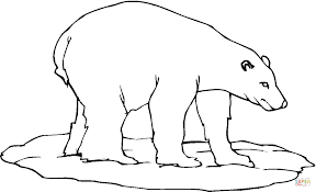 Small Picture Polar Bear 23 coloring page Free Printable Coloring Pages