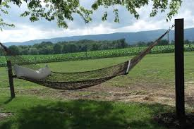 Create Hammock Commune With Tree O Frame For How To Hang A Hammock ...