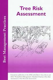 Bmp Tree Risk Assessment