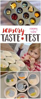 best ideas about five senses preschool five preschool 5 senses taste test
