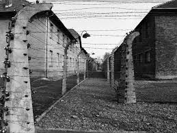 barbed wire fence concentration camp. Barbed Wire Fence Concentration Camp
