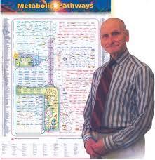 A Lifetime Of Metabolism Springerlink
