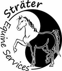 Manege Stal T Patersnest Welsum Dieren Paarden