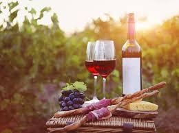 Bilderesultat for fransk vingård