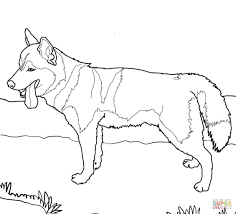 Siberian Husky Dog Coloring Page Within Dachshund Coloring Pages