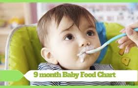 20 Months Baby Food Chart 9 Month Baby Food Chart Budding Star