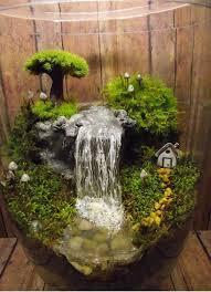 brilliant indoor water garden ideas