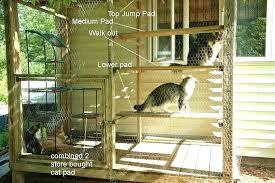 outdoor cat play area outdoor cat playground picture of assemble jumps and runs outdoor cat outdoor