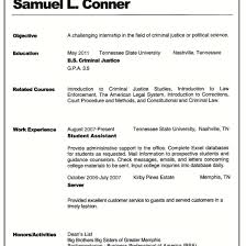 Different Kinds Of Resume Formats Types Resumes Free Download Format