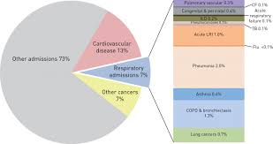 Respiratory Disease Fact Chart The Burden Of Lung Disease Ers