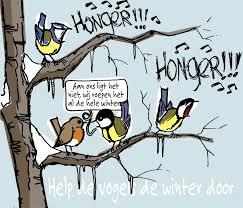 Afbeeldingsresultaat voor afbeeldingen winter vogels