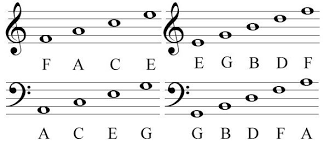 how to read bass sheet music how to read sheet music for beginners