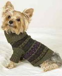 Free Knitted Dog Sweater Patterns Stunning 48 English Dog Sweaters For Pets Knitting Patterns Dogs