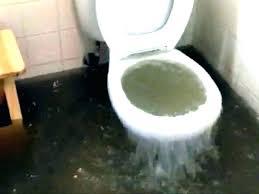 toilet backing up into shower bathtub backing up toilet and shower backed up incredible blog water toilet backing up