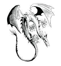 Dragon Coloring Pages Realistic Coloring For Babies Amvame
