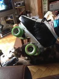 Falcon Plate Size Skatelog Forum