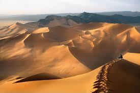 Природная зона пустыня характеристика описание особенности  Природная зона пустыня