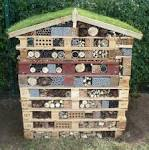 Image result for bug hotel