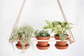 DIY hanging planter - trio