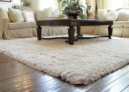 Auroroa Borealis Shag Rug Traditional Living Room Orange