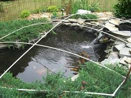 Best 25+ Diy pond ideas on Pinterest | Fish ponds, Pond ideas and Tractor  tire pond