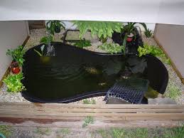 Backyard Ponds Backyard Ponds For Turtles Outdoor Furniture Design And Ideas