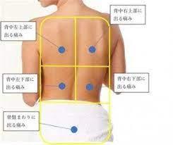 肩 甲骨 痛み 左 膵臓
