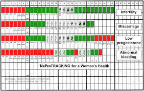 Creighton Model Chart 4 Symptoms Women Think Are Normal But Are Not Creighton