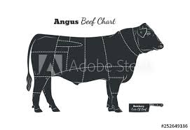 Cattle Chart Beef Cow Bull Butcher Meat Shop Logotype Or Sign Calf Angus