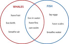 Compare And Contrast Venn Diagram What Is A Venn Diagram Math 101