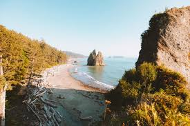 Tide Chart Long Beach Wa Everything You Need To Know About Camping On The Beach In