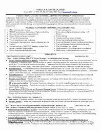 Entry Level Business Analyst Resume Sample Awesome 51 Elegant
