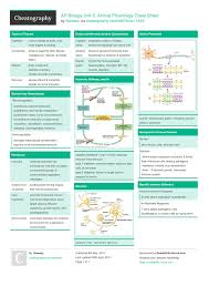 Ap Biology Unit 5 Animal Physiology Cheat Sheet By Hlewsey Http