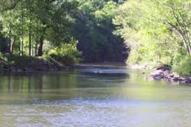 Loyalsock Creek Hatch Chart Welcome To The Feathered Hook A Bed Breakfast And Fly