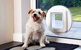 small microchip dog door for timber glass supplied installed
