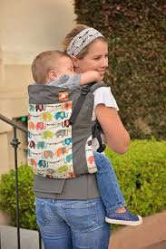 carrier for toddler. tula toddler carrier, more accommodating than the boba or ergo. carrier for