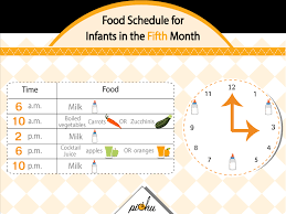 Mother Guide Your Baby Feeding From Birth To 6 Months