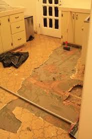 best 25 removing vinyl flooring ideas on vinyl floor covering vinyl flooring installation and boden