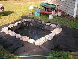 outdoor turtle pond version 1 0