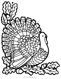 printable turkey coloring page